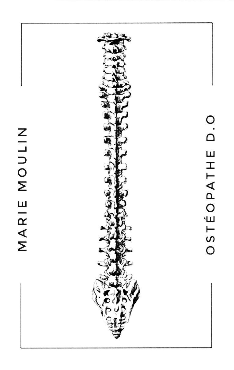 Colonne vertebrale Marie Moulin ostéopathe